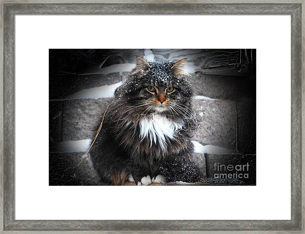 Baby It's Cold Outside Framed Print by The Stone Age