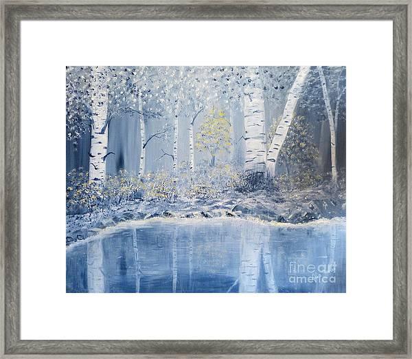 Birch Reflections Framed Print