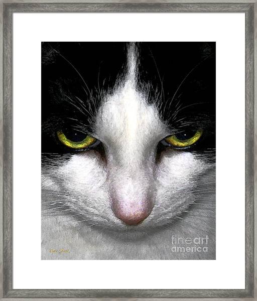 Casey Framed Print