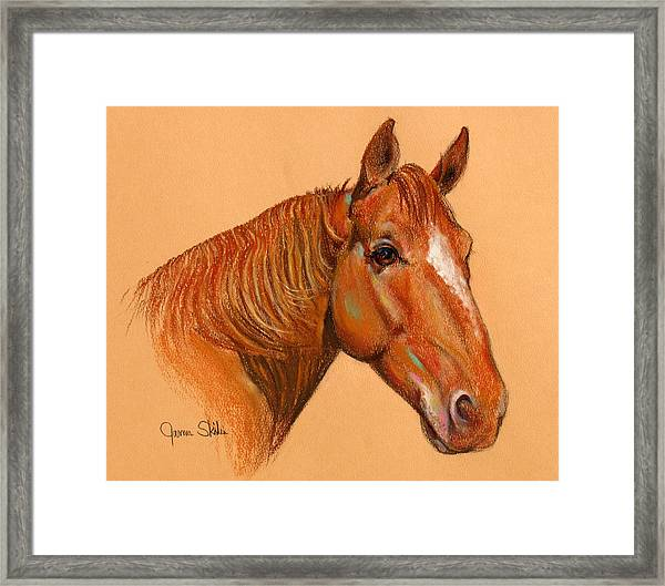 Catch Me If You Can Framed Print by James Skiles