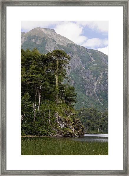 Chile South America Lago El Toro Framed Print by Scott T. Smith