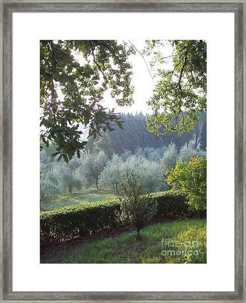 Dawn In Loppiano Framed Print