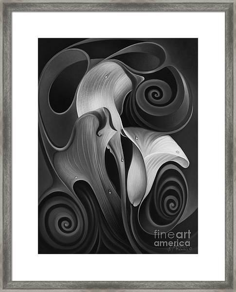 Dynamic Floral 4 Cala Lilies Framed Print