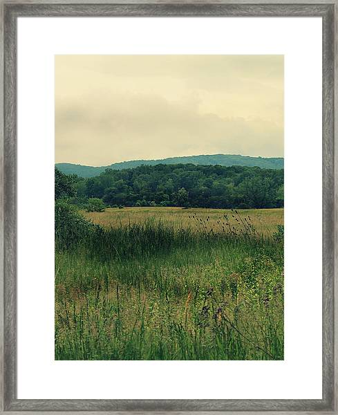 Framed Print featuring the photograph Field Day by Candice Trimble