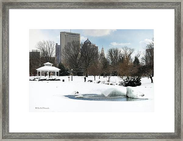D48l3 Goodale Park Photo Framed Print