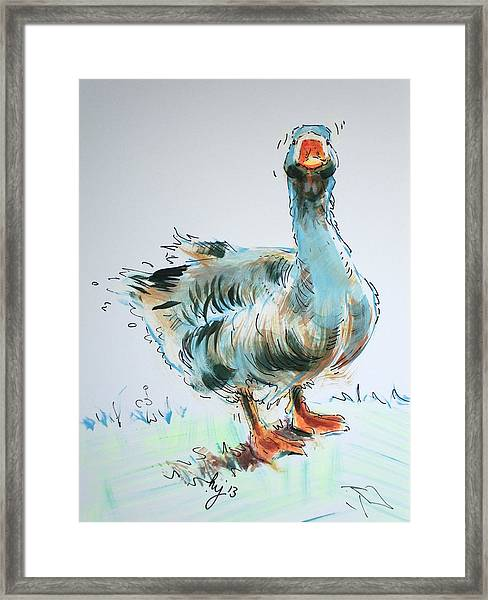 Goose Drawing Framed Print