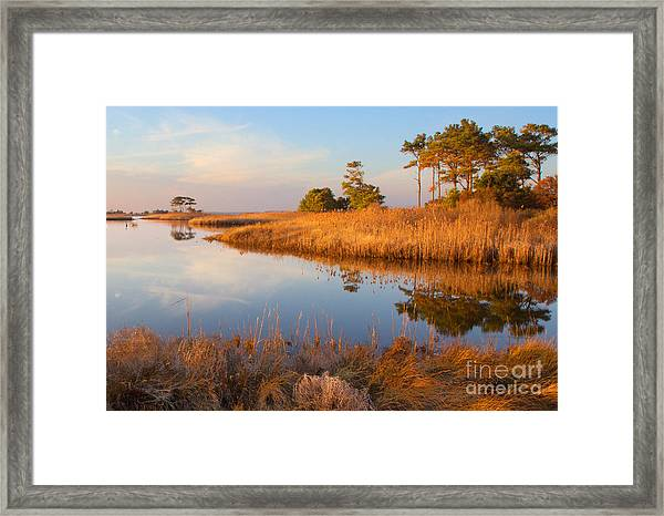 Gordons Pond Framed Print by Robert Pilkington