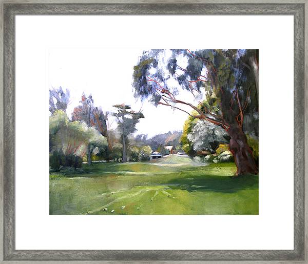 Great Meadow Golden Gate Park Framed Print