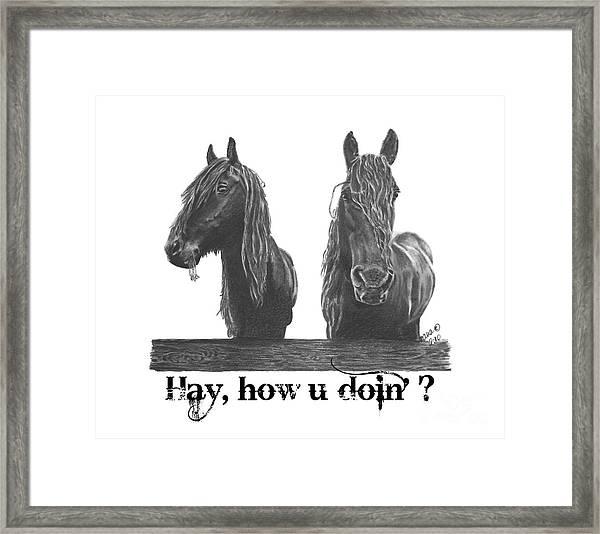 Hay How U Doin Framed Print