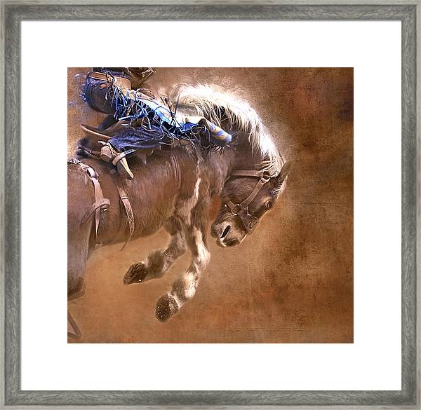 Let R' Buck Framed Print