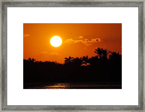 Marco Island Sunset Framed Print
