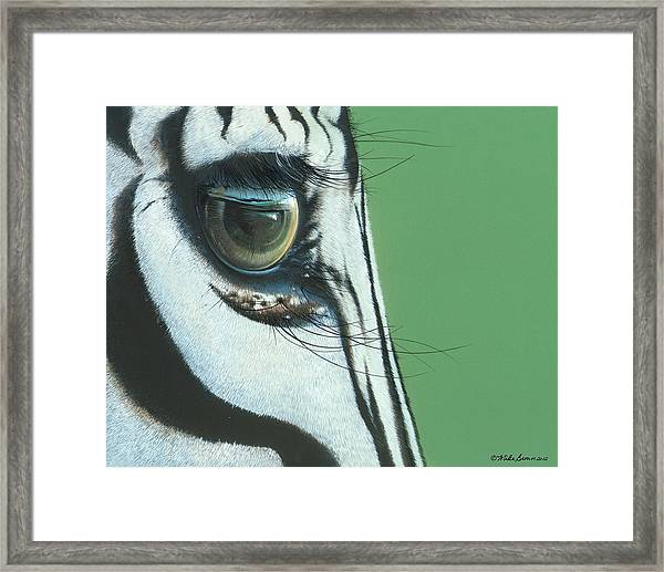 Mirror To The Soul Framed Print