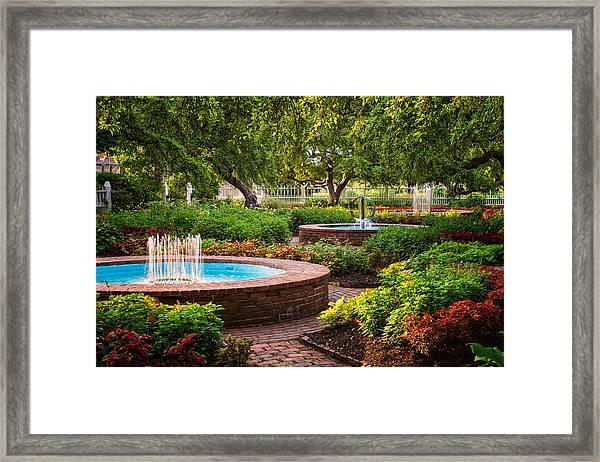 Morning Garden Framed Print
