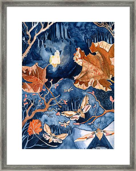 Moths To A Flame Framed Print