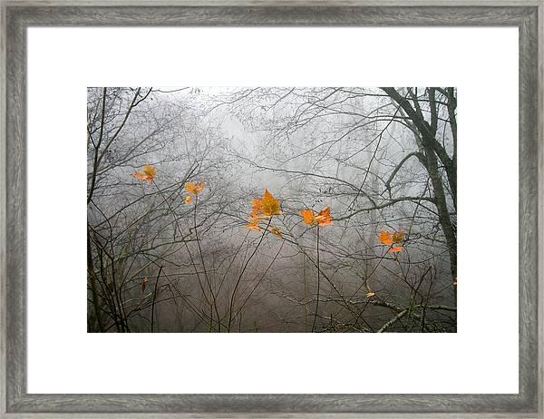 Mountain Fog Framed Print