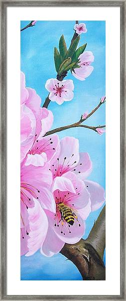 #2 Of Diptych Peach Tree In Bloom Framed Print