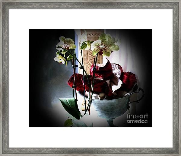 Orchids Framed Print by Jinx Farmer