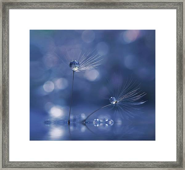 Prism Of Life... Framed Print