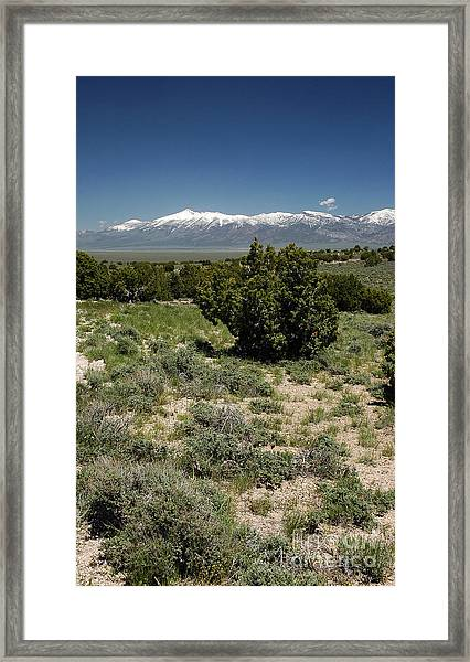 614p Schell Creek Range Nv Framed Print