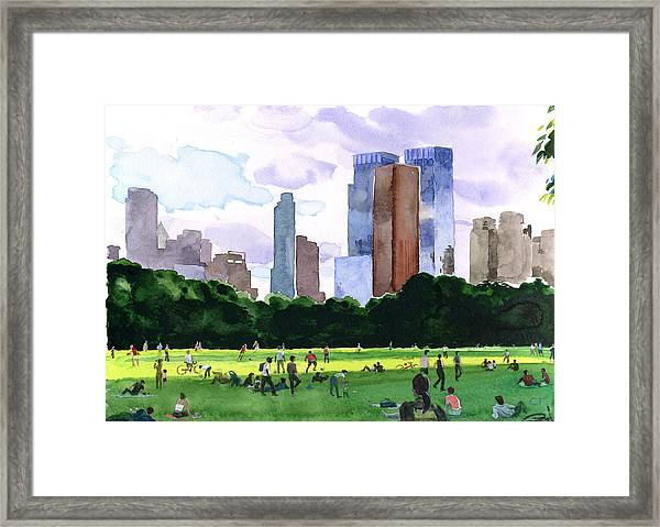Sheep Meadow Framed Print