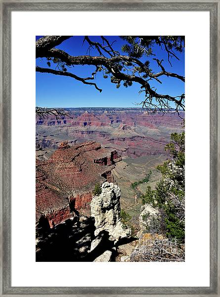 South Rim Of The Grand Canyon Framed Print