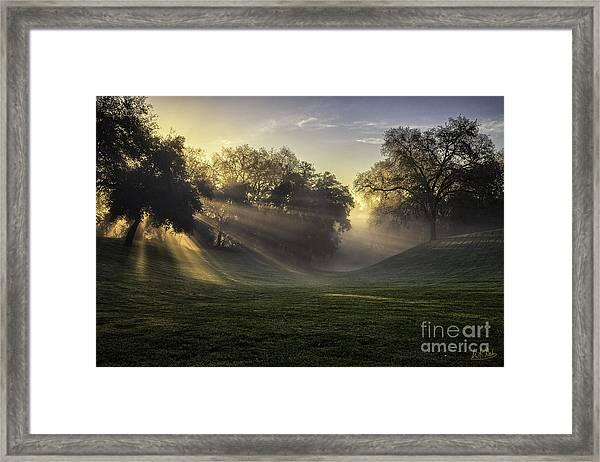 Sunrise Among The Oaks Framed Print