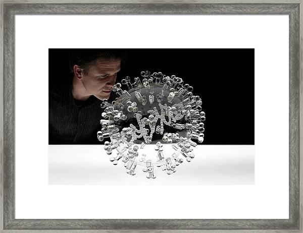 Swine Flu Virus Framed Print by Luke Jerram/science Photo Library