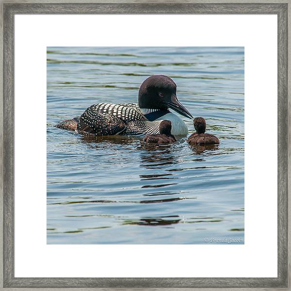 The First Lesson Framed Print