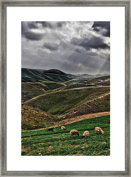 The Lord Is My Shepherd Judean Hills Israel Framed Print