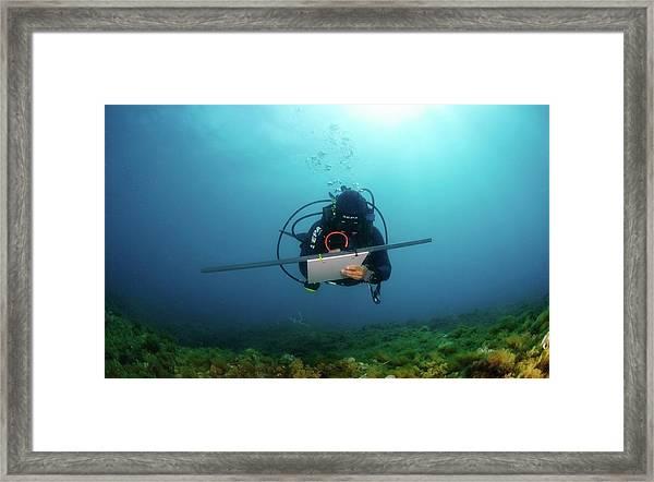 Underwater Survey Framed Print by Photostock-israel