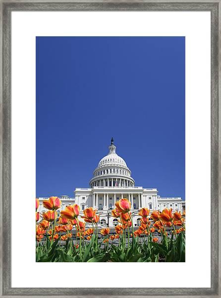 Usa, Washington Dc Framed Print