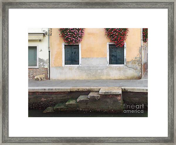 Venice Canal Shutters With Dog And Flowers Horizontal Framed Print
