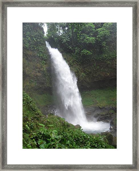 Waterfall Framed Print by Anastasia Konn
