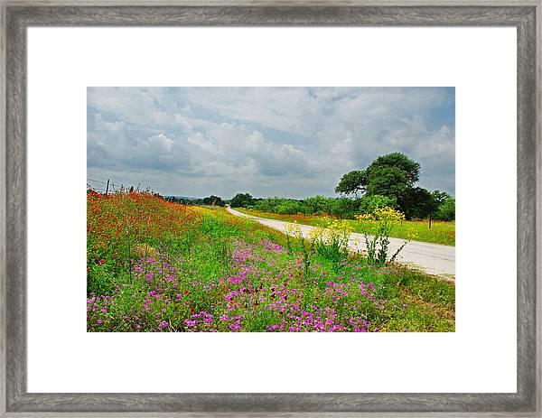 Wildflower Wonderland Framed Print