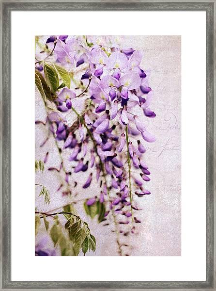 Wisteria Petals Framed Print