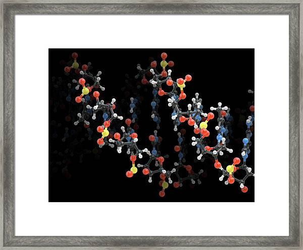 Dna Molecule Framed Print