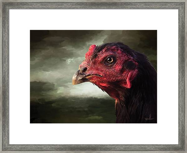22. Game Hen Framed Print