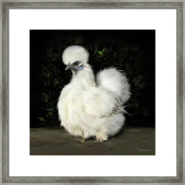 24. Tiny White Silkie Framed Print