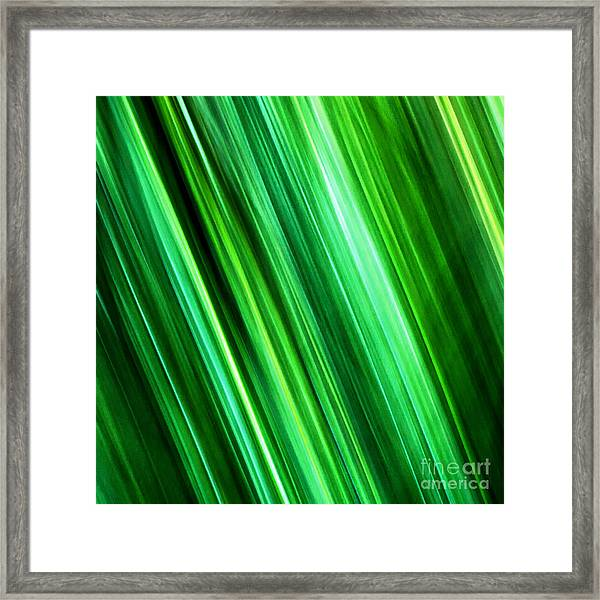 Meditations On Movement In Nature Framed Print