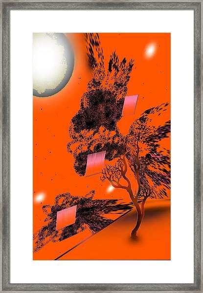 281020131954 Framed Print by Oleg Trifonov