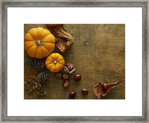 Autumn Still Life Framed Print by Science Photo Library