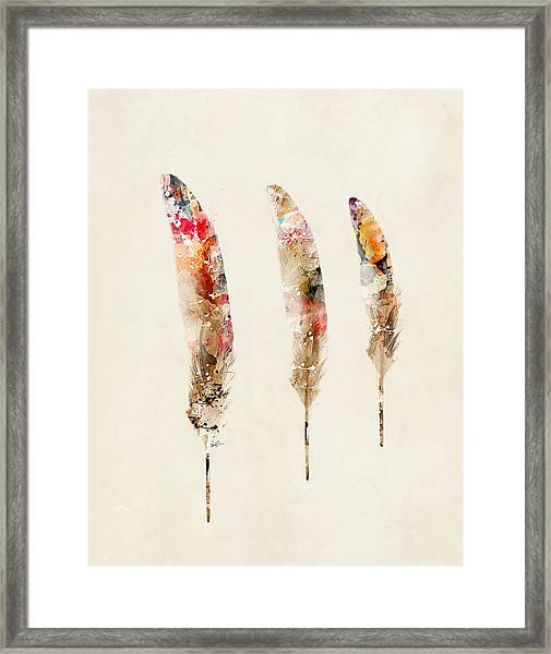 3 Feathers Framed Print