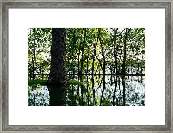 Lake Nokomis In A Wet Spring Framed Print