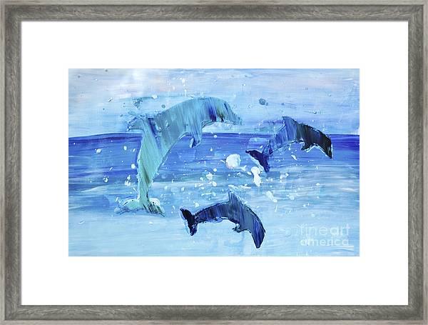 3 More Dolphins Dancing Framed Print