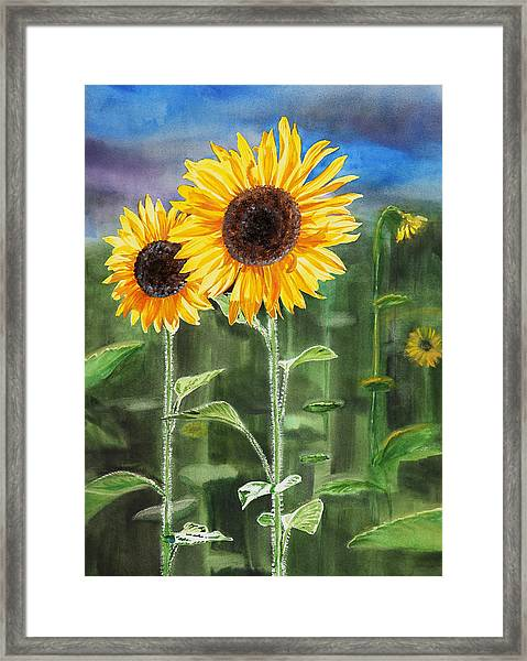 Sunflowers Framed Print