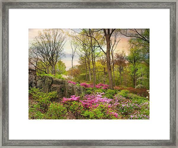 The Azalea Garden Framed Print