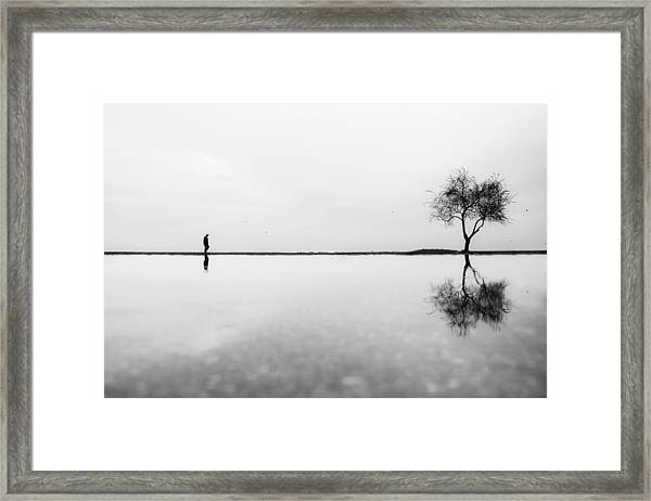 Untitled Framed Print by Ali Ayer