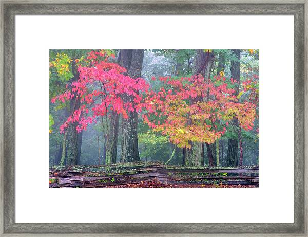 Usa, Pennsylvania, Valley Forge Framed Print