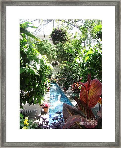 Washington Dc  Botanical Garden Framed Print