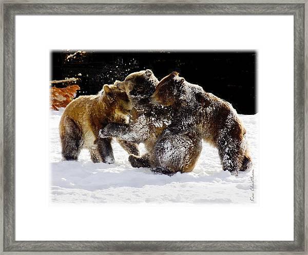 300 Pound Playmates Framed Print